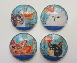 4 CAT LOOKING IN FISH BOWL Glass Magnets Kitchen Refrigerato