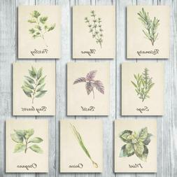 Botanical Greenery Prints Wall Decor - Kitchen Art Herbs Lea