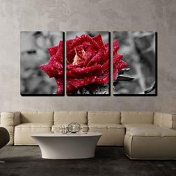 wall26 - 3 Piece Canvas Wall Art - Red Rose on Grey - Modern
