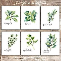 kitchen herbs art prints botanical prints set