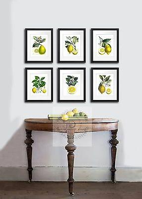 Farmhouse Kitchen Decor Art Print 6