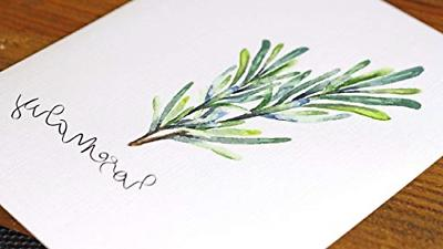 Kitchen Herbs Art Prints - Set of 6 - Unframed -