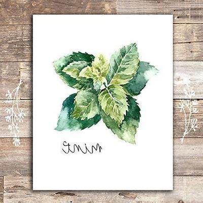 Kitchen Art - Botanical Prints Set Unframed 8x10s