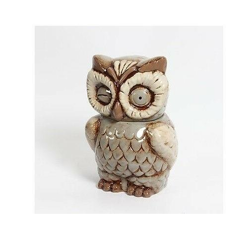 Owl Ceramic Canister - COOKIE Jar OWL NEW - Decorative Home