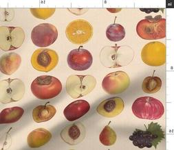 Vintage Fruit Kitchen Decor Apples Grapes Fabric Printed by